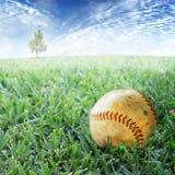 Basebol na grama Imagem de Stock