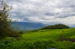 Nature of Tavush region in Armenia. Based on the historical divisions of Ancient Armenia, the current territory of the province occupies parts of the Varazhnunik royalty free stock images