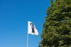 Basel miasta flaga z zielonym drzewem i niebieskim niebem obrazy stock