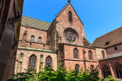 The Basel Minster, Swiss Royalty Free Stock Photography