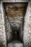 Basement stairs. An old building basement stairs, ruined brick wall Royalty Free Stock Images