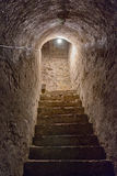 Basement stairs in old castle Stock Images