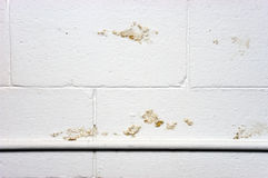 Basement Wall Water Moisture Seepage Damage Leak Royalty Free Stock Photography