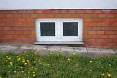 Basement window. And green grass Royalty Free Stock Images