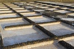 basenów janubio lawowa bagna sól Obraz Stock