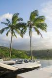 basenów palmowi drzewa Obrazy Stock