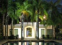 basenów palmowi drzewa Obraz Royalty Free