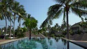 Basen powierzchnia w Tropikalnym kraju Otaczającym z drzewkami palmowymi zbiory