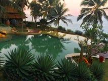 Basen przegapia drzewka palmowe i ocean na krawędzi skały Fotografia Royalty Free