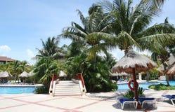 basen tropikalny Zdjęcia Royalty Free