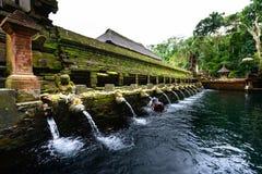 Basen święte wiosny przy Tirta Empul, Bali Obrazy Stock