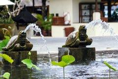 Basen z lelujami i drzewkami palmowymi wokoło mnie Seascape Indonezja fotografia royalty free