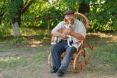 Basenji与大师坐一把藤椅 库存图片