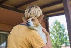 Basenji狗画象在它逗人喜爱的大师容忍的  免版税库存照片