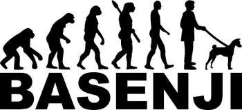 Basenji ewolucja z imieniem royalty ilustracja