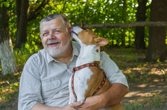 Basenji licks the master showing how it loves him Royalty Free Stock Photography