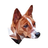 Basenji polygonal portrait Royalty Free Stock Image