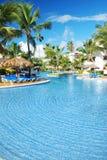 basenu pływać tropikalny Fotografia Royalty Free