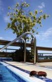 baseny okulary przeciwsłoneczne Fotografia Stock