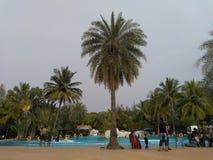 baseny parasoli pływający wody fotografia stock