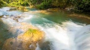 Baseny Przy Agua Azul Chiapas Fotografia Stock
