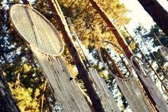 Basez pour épouser le style rustique de décoration dans la forêt Photo stock