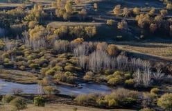 Bashang-Grasland Stockfotos