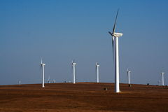 Free Bashang Grassland In Inter-Mongolia Of China Royalty Free Stock Image - 6655166