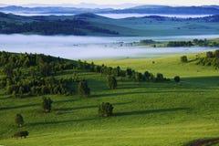 Bashang obszar trawiasty Wewnętrzny Mongolia Fotografia Royalty Free