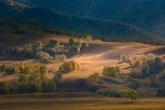 Bashang Plateau - Autumn landscape