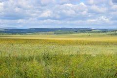 Bashkir дорога через предгорья Ural и поля лугов Стоковые Изображения