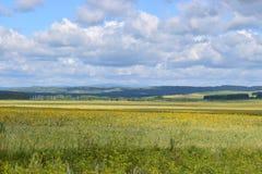 Bashkir дорога через предгорья Ural и поля лугов Стоковое фото RF