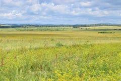 Bashkir droga przez Ural pogórzy i łąk poly Fotografia Stock