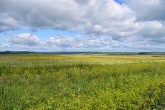 Bashkir Ural gór pogórzy pola Obrazy Royalty Free