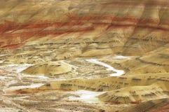 Basi fossili di giorno del John verniciate Fotografia Stock Libera da Diritti