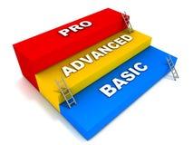 Basic advanced and pro levels