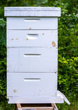Basic Bee Hive. This is a single bee hive starting at the bottom board with landing pad and two deep supers were the queen bee lays all her eggs inside the comb stock photography