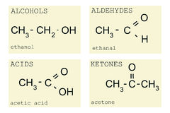 Basic chemistry. With alcohols, acids, aldehydes and ketones on display Stock Photos