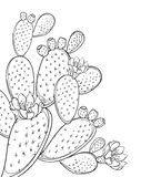 Vector corner bunch of outline Indian fig Opuntia or prickly pear cactus, flower, fruit and spiny stem in black isolated on white. royalty free illustration