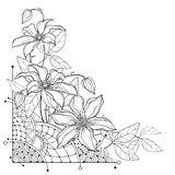 Vector corner bouquet with outline Clematis or Traveller`s joy ornate flower bunch, bud and leaf in black isolated on white. Vector corner bouquet with outline stock illustration
