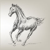 Basic CMYK. Free prancing horse for equestrian design Stock Photos