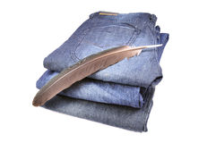 Basic colored denims with feather Stock Images