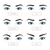 6 basic eyebrow shapes with captions. 6 basic eyebrow shape types. Classic type and other. Vector illustration eyebrows with eyes - stock vector illustration Stock Images