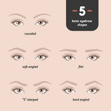 5 basic eyebrow shapes. Various types of eyebrows. Classic type and other. Vector illustration eyebrows with eyes Stock Photography