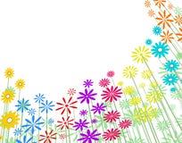 Basic flowers Royalty Free Stock Image