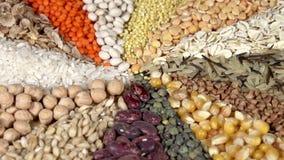 Basic Food stock video footage