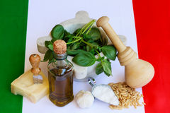The basic ingredients of italian pesto. Are:pine-nuts,basil,cheese,salt,garlic,oil Royalty Free Stock Photography