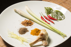 Basic ingredients for Thai cooking Royalty Free Stock Photography