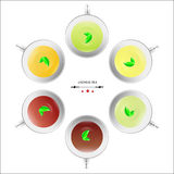 6 basic kinds of Chinese tea Stock Image