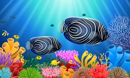 Angelfish in the sea surrounded by sea plants and coral. Illustration royalty free illustration